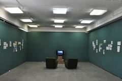 Andrea Coyotzi Borja (exhibition view, 2013)